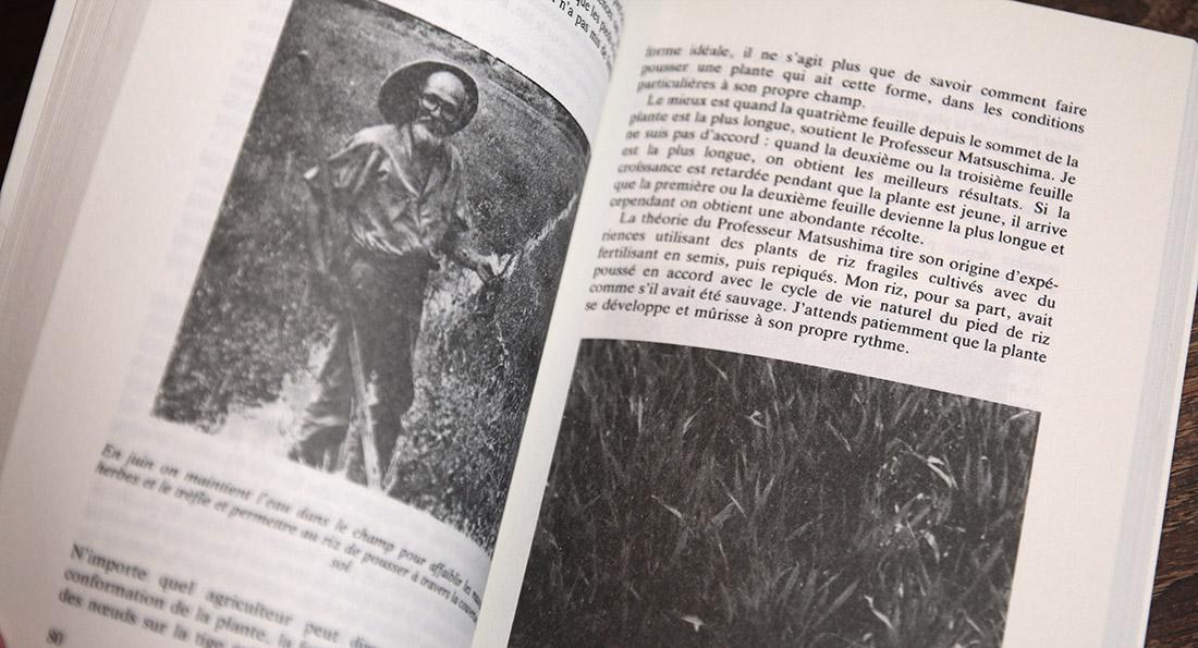 Extrait du livre La révolution d'un seul brin de paille par Masanobu Fukuoka