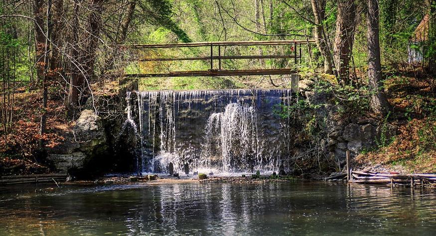 petit barrage dans la forêt