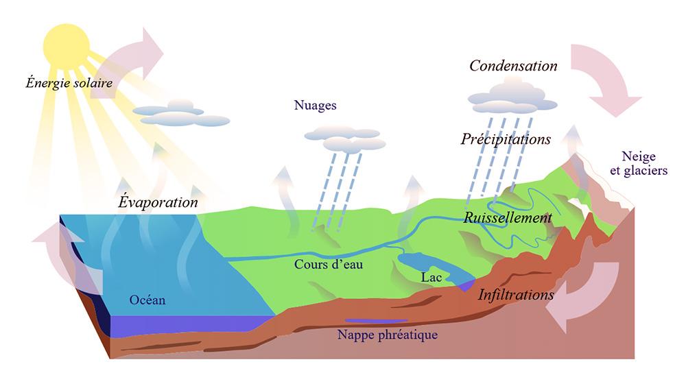 cycle eau naturel