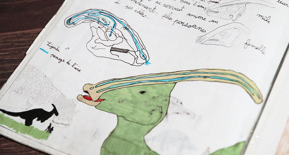 livre dinosaures enfant dessins