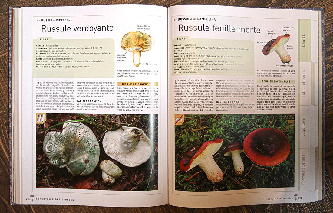 extrait du livre larousse des champignons