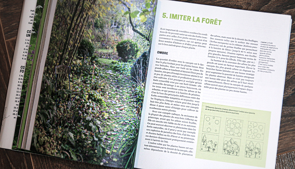 imiter forêt permaculture forêt comestible