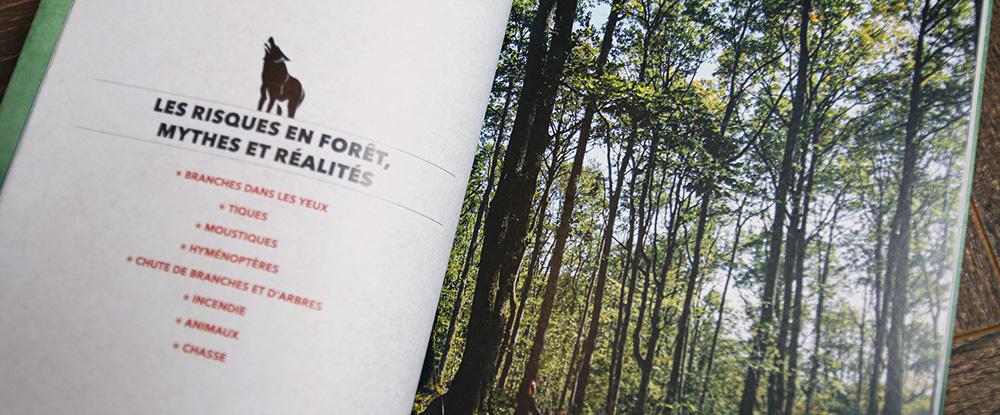 risques forêt survie bushcraft